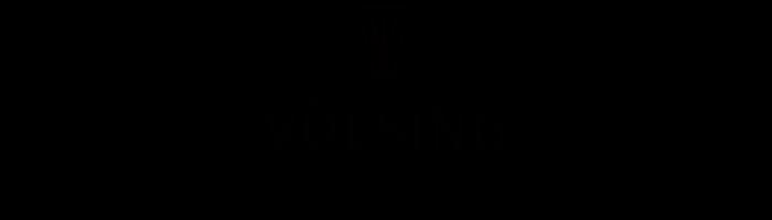 voelsing logo